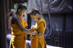 Two novices are helping to cover the robes. SAMUTPRAKAN, THAILAND – MARCH 19: Two novices are covering the cloth, which is typical of Buddhist priests royalty free stock photos