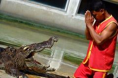 ` ` SAMUTPRAKARN, ТАИЛАНД - 25-ОЕ ДЕКАБРЯ 2016: Выставка крокодила на ферме 25-ого декабря 2016 в Samutprakarn, Таиланде Стоковое Фото