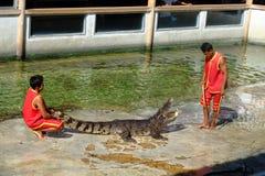 ` SAMUTPRAKARN `, THAILAND - 25. DEZEMBER 2016: Es ist Krokodilshow am Bauernhof am 25. Dezember 2016 in Samutprakarn, Thailand Lizenzfreie Stockbilder