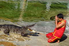` SAMUTPRAKARN `, THAILAND - 25. DEZEMBER 2016: Es ist Krokodilshow am Bauernhof am 25. Dezember 2016 in Samutprakarn, Thailand Stockbild