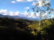 San agustin Colombia Zdjęcia Royalty Free