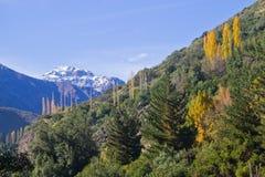 San Alfonso dal, slinga i berget arkivfoton