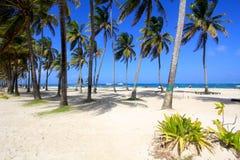 San Andres, Colômbia Foto de Stock Royalty Free
