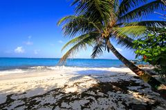 San Andres, Colombie images stock