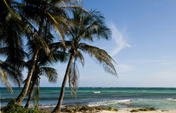 San Andres Island , Colombia Royalty Free Stock Photography