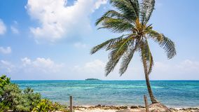 San Andres Island Colombia Beach Scene South America. Very much one of the main tourist attractions and points of interest in the area Royalty Free Stock Photography