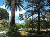 San Anton Garden Lizenzfreies Stockbild