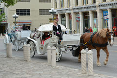 San Antonio Carriages Royalty Free Stock Photography