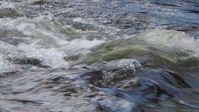 San Antonio River nel BLANCA di Cuesta archivi video