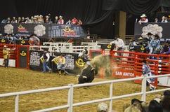 San Antonio Rodeo. Man on a horse in the San Antonio rodeo,  February 2014 Royalty Free Stock Photos