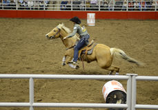 San Antonio Rodeo. Woman on a horse in the San Antonio rodeo,  February 2014 Stock Photos