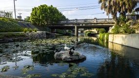 San- Antoniofluss-Weg stockfotografie