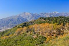 San Bernardino山 免版税库存图片