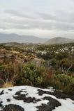 San Bernardino gór lasu państwowego opad śniegu fotografia stock