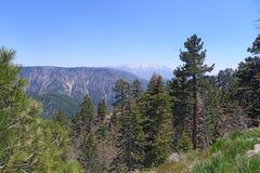 San Bernardino National Forest Fotografie Stock Libere da Diritti