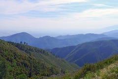 San Bernardino National Forest Immagini Stock Libere da Diritti