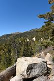 San Bernardino National Forest Images stock