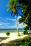 Beautiful beach in san blas, vertikal image stock photography