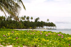 San Blas Islands. In Panama Royalty Free Stock Photography