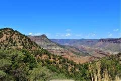 San Carlos Apache Indiańska rezerwacja, Gila okręg administracyjny, Arizona, Stany Zjednoczone obraz stock