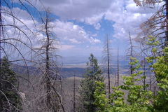 San Catalina góra, Tucson, AZ Zdjęcia Royalty Free