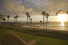 San Clemente Pier after a storm with Sea Gulls Royalty Free Stock Photo