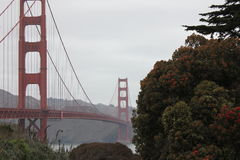 San-de brug van de fanciscobaai Royalty-vrije Stock Foto's
