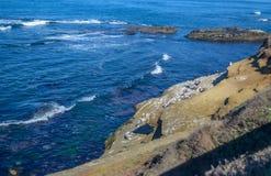San Deigo coast line, California. Beautiful pacific coast near San Diego, California stock image