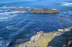 San Deigo coast line, California. Beautiful pacific coast near San Diego, California stock photos