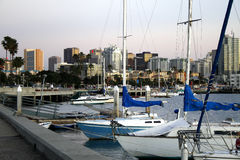 San Diego Bay,Ca. Downtown of San Diego, Ca, skyline, sailing, clear evening stock photo
