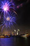 San Diego Bay Firework Stock Photography