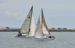 San Diego Bay Sailing Fotografia Stock Libera da Diritti