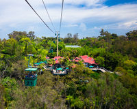San Diego Zoo. SAN DIEGO, CA - AUG 13: Skyfari aerial cable car over San Diego Zoo on Aug 13, 2012.This world renowned zoo was founded on October 2, 1916 stock image