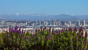 San Diego, California. With mountain snow and flowers, from Fort Rosecrans National Cemetery, Point Loma Stock Photos