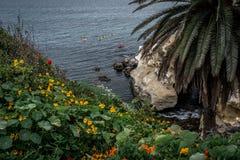 San Diego California Coastline in Spring. Sunset in La Jolla California USA royalty free stock photos