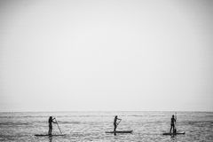 SAN-DIEGO, CALIFORNIA, USA - AUGUST 24: stand up paddle group on. BARCELONA, SPAIN - AUGUST 24: stand up paddle group on the water on August 24, 2016 Royalty Free Stock Images