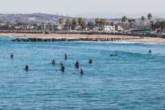 Group of Surfers at Ocean Beach in San Diego stock images