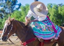 San Diego - Cinco De Mayo Stock Photography