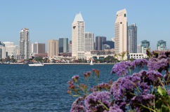San Diego Downtown Stock Image