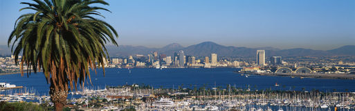 San Diego harbor and skyline royalty free stock image