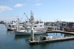 San Diego marina, California. Royalty Free Stock Image