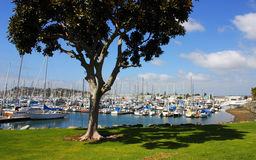 San Diego Marina Stock Photos