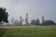 San Diego`s famous Balboa park and its beautiful vegetation during the morning haze Royalty Free Stock Photo