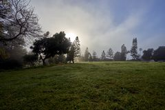 San Diego`s famous Balboa park and its beautiful vegetation during the morning haze Stock Photography