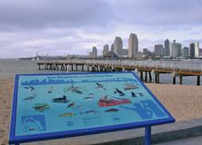 San Diego Skyline and Ferry Landing. View of downtown San Diego and Harbor Stock Photo