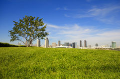 San Diego sunny spring. San Diego Downtown skyline with green grass as foreground royalty free stock image
