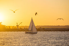 San Diego Waterfront Public Park, Marina and the San Diego Skyline. California, United States. Sunset at San Diego Waterfront Public Park, Marina and the San stock photography