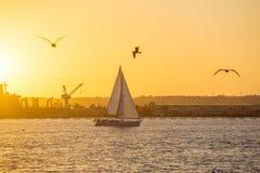 San Diego Waterfront Public Park, porticciolo ed il San Diego Skyli fotografia stock