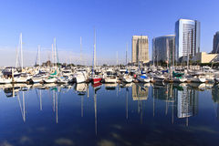 San Diego Yachts and City Skyline. San Diego city skyline showing the buildings of downtown rising above harbor where the many boats sit royalty free stock photos