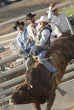 San Dimas Bull Riding Royalty Free Stock Photos